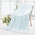 Family Daily Large Microfiber Towel Bath Towels