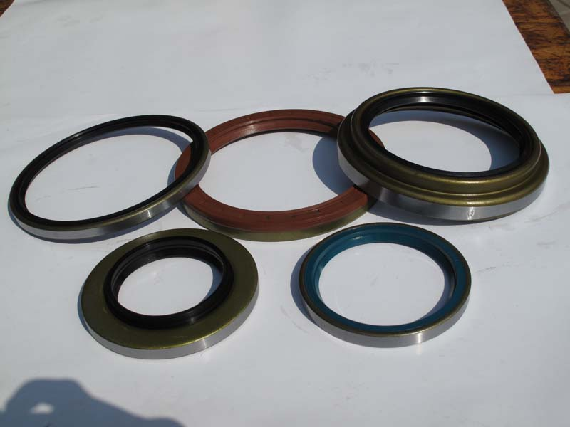 Industry Type Vc Oil Seal
