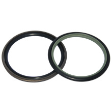 Expert Supplier Hydraulic Seals with Type Gsj/Gsd