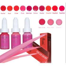 Professionelle bunte Tattoofarbe für Permanent Make-up (ZX-0521)