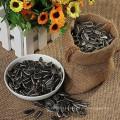 Semillas comestibles de girasol de Inner Mongolia