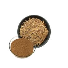 Health Product Natural Siberian Ginseng Extract Powder