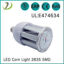 Ampoules à LED imperméables IP64 27W