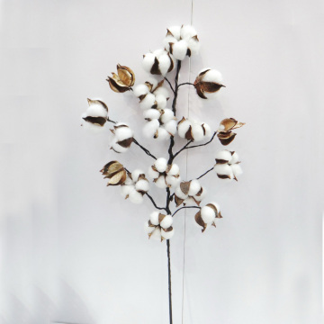 Decoração de flores preservadas naturais L75cm Decoração de flores de flores artificiais