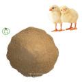 Carne y hueso Comida para animales Buena comida