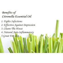 100% d'huile essentielle de citronnelle biologique pure en vrac