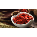 Ningxia biologique 380granule / 50g Goji Berry / Chinese Wolfberry