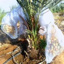 Weiße Uv-Datum-Netztasche mit magischem Band für Palme