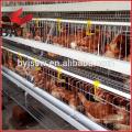 Haute qualité Tanzanie Layer Poultry Farm poulet Cage à vendre