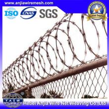 Использование бритвы в пограничном заборе с (CE и SGS)