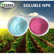 Customized Chemical Soluble Fetilizer NPK 19-19-19