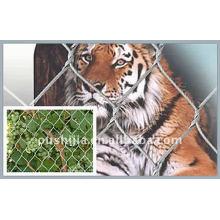 Animal Fence Netting(factory)