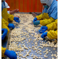 Frozen Pure Garlic Paste Pure