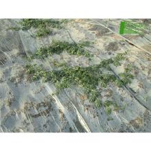 Rollos de película plástica para la biodegradación de la agricultura