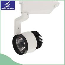 Projecteur à LED à LED 30W COB avec haute qualité