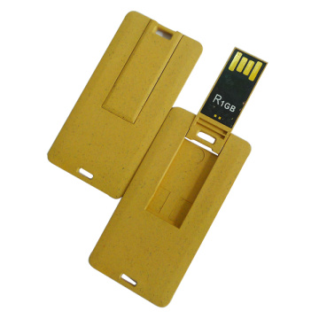 Fancy 2gb USB Flash Drive Tarjetas de visita