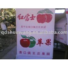 Shandong Chine Fuji pomme