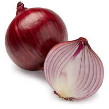 Red Onion best quality cheap price onion health food onion