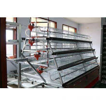 High quality breeding layer chicken cages
