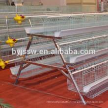 Conception de cage de poulet de couche pour le hangar de volaille de poulet de ferme