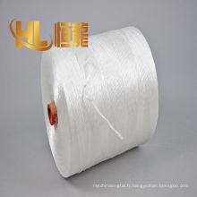 corde biodégradable de ficelle de film de ficelle de pp