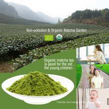 Japanese Ceremony Grade Matcha Wholesale