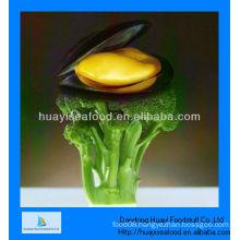 Frozen boiled mussel meat
