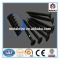 common nail/galvanized iron nail
