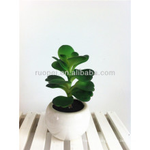 Cheap plastic small Artificial Succulent Plants potted bonsai with ample supply