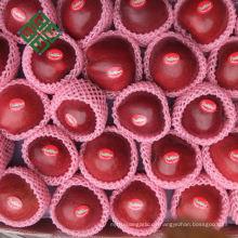 Chinesischer Fujiäpfel frischer Apfel für Fuji-Apfel