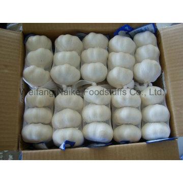 2015 nueva cosecha de ajo chino fresco