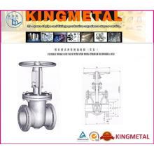 Válvula de porta do aço de molde da classe 150 ~ 1500