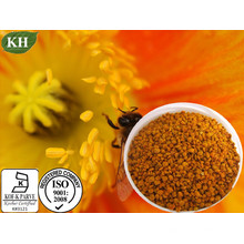 Pólen de abelha, extrato de pólen de abelha, proteína