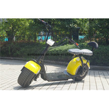 1000W City Coco 2 Wheel Electric Standing Scooter
