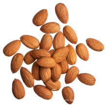 Health and nutritious Chinese almond nut kernel Health