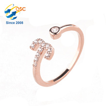Twelve Constellations Platinum Rose Gold Plating Sterling Adjustable Opening Silver Ring Set