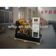 Vente de générateur magnétique Open Type Weifang 25kva