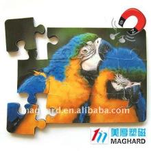 Parrot Magnetic Puzzle diecut 12pcs DIY Toys