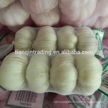 Chinese garlic with prepack or small bag at competitive price