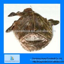 Fresh frozen monkfish fillets