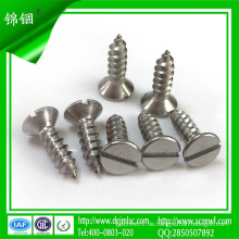 10mm Edelstahl selbstschneidende Schraube für Beton