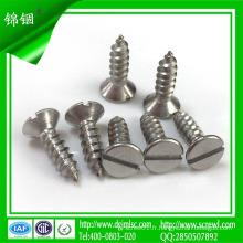 Vis à taraudage en acier inoxydable de 10 mm pour béton