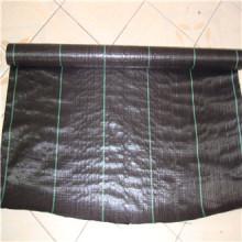 Tapis anti-mauvaises herbes en plastique anti-UV (couvre-sol)