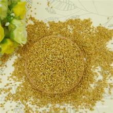 2016 New Crop Yellow Millet en cáscara para arroz al por mayor