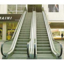 Escaleras mecánicas residenciales residenciales baratas del hogar del acero inoxidable