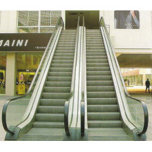 Escalier en acier inoxydable résidentiel bon marché