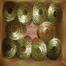 EXW Bulk Pallet Coil Nail Painted Coil Nail Manufacture China