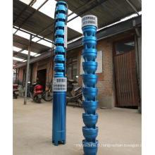 Pompe électrique submersible profonde de série de QJ pour la pompe d'irrigation de ferme