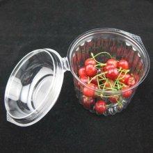 Caja de empaquetado de plástico de fruta