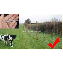 Field Mesh Fence for Animals and Wildlife